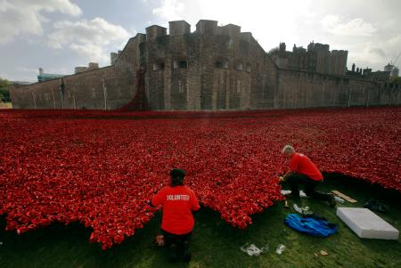"Volunteers plant ceramic poppies amongst other poppies that form part of the art installation called ""Blood Swept Lands and Seas of Red"" at the Tower of London October 9, 2014. The evolving art installation, which will be completed on November 11, will create a commemoration for the centenary of World War One. REUTERS/Luke MacGregor (BRITAIN - Tags: MILITARY SOCIETY TRAVEL ANNIVERSARY) - RTR49IXP"