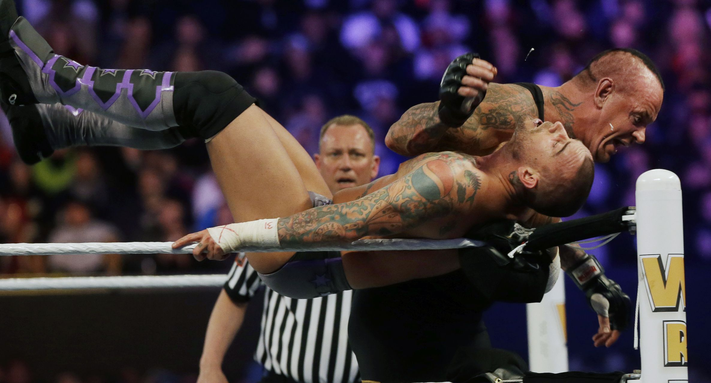 Can WWE wrestlers really fight? - Quora