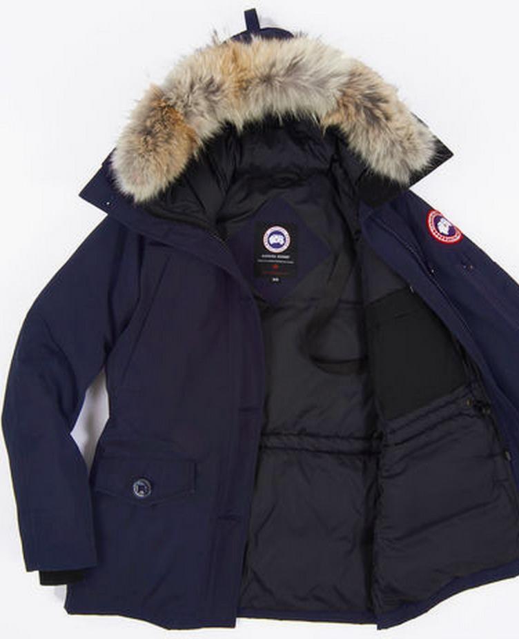 90c259ae8 A shopper's guide to ethically-sourced down jackets — Quartz