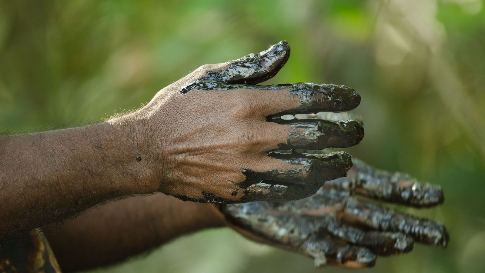 Locals are using their bare hands to collect the oil residue.