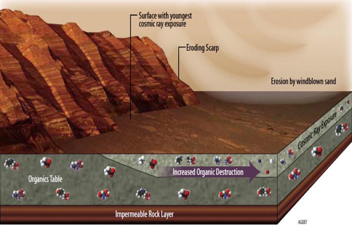 methane pathways