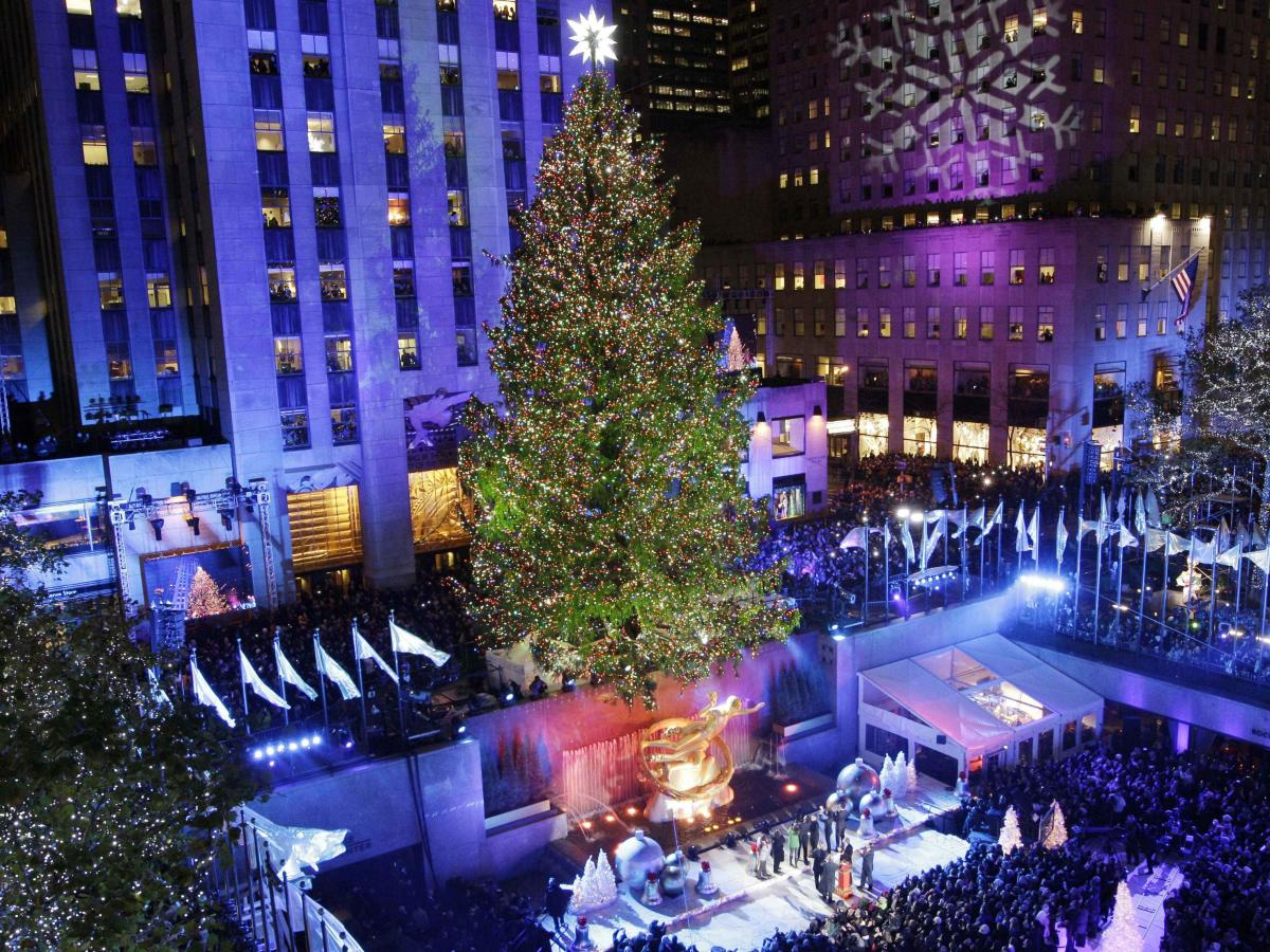 the strange cool job of picking the rockefeller christmas tree quartz picking the rockefeller christmas tree