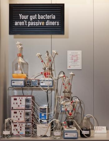 Antenna exhibition; Cravings: Can your food control you? Cravings explores how food affects your body, brain and eating habits through personal stories, fascinating objects and cutting-edge science and technology. Artificial Gut.
