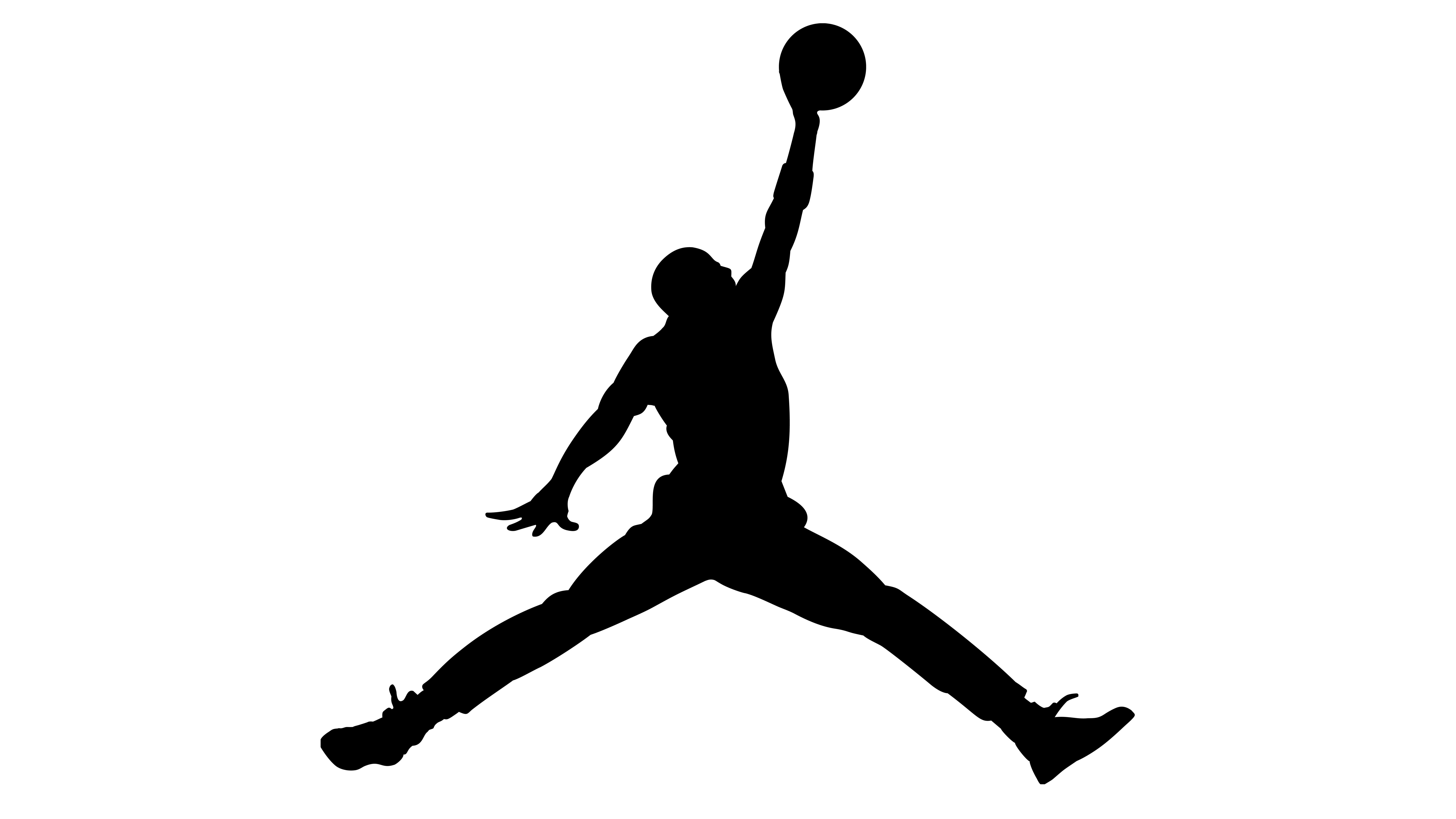 Air Jordan Designer Logo