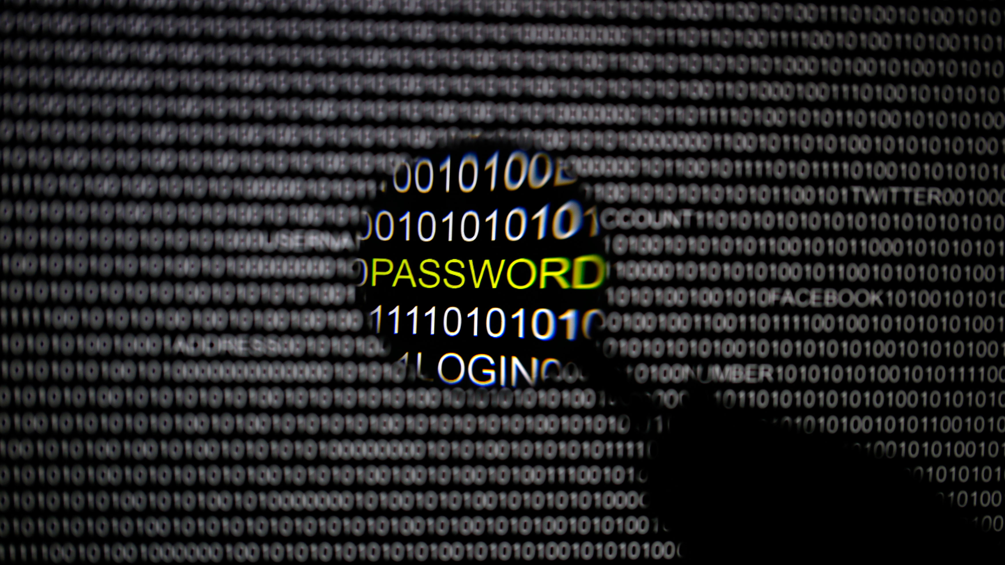 security breach password email user