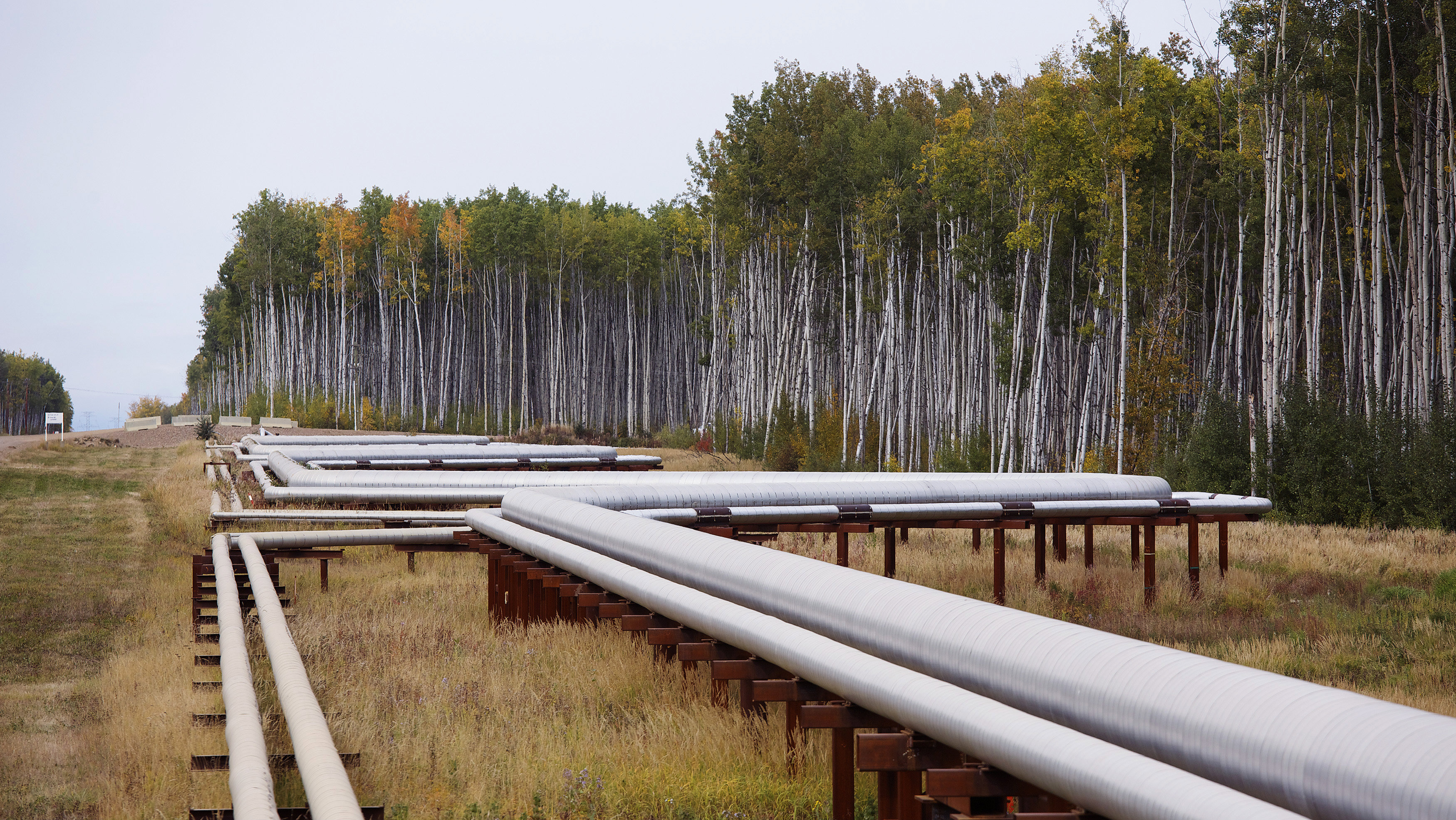 Pipelines run at the McKay River Suncor oil sands in-situ operations near Fort McMurray, Alberta, September 17, 2014. In 1967 Suncor helped pioneer the commercial development of Canada's oil sands, one of the largest petroleum resource basins in the world. Picture taken September 17, 2014.