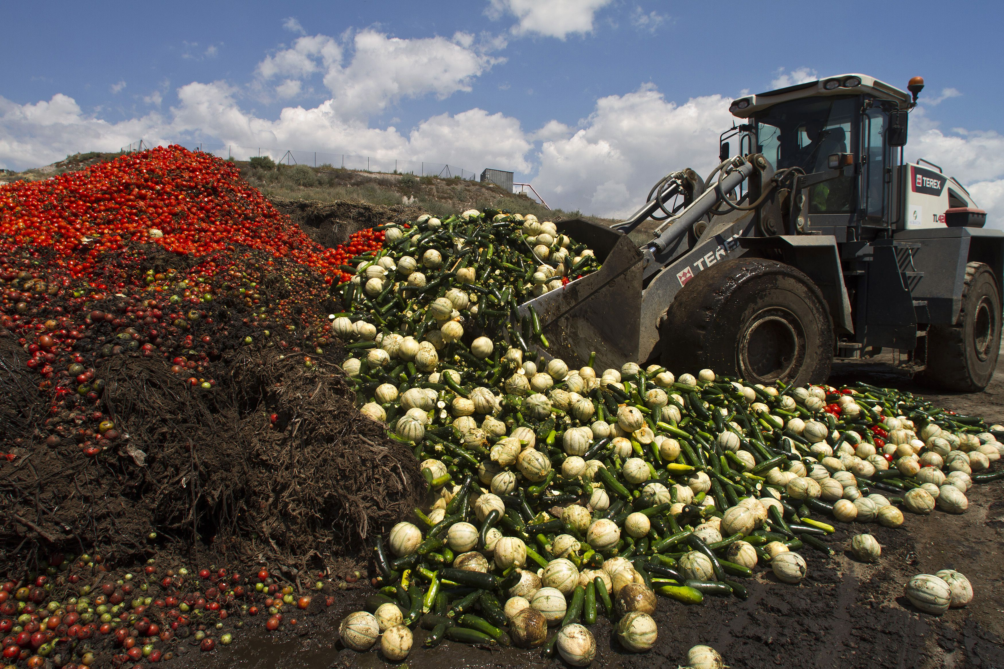 """A digger unloads discarded vegetables into a pile of vegetable residue at the Albahida vegetable recycling plant in Nijar, in the southern Spanish region of Almeria, June 8, 2011. On Tuesday the European Union offered farmers 150 million euros in aid to reimburse producers who have been unable to sell fruit and salad vegetables for nearly two weeks after being erroneously blamed for an E.coli outbreak in Germany"""". They want to fob us off with 150 million (euros). It's shameful, it's humiliating when losses in our country are above 350 million,"""" Miguel Lopez, general secretary of the COAG farmers' union told reporters.REUTERS/Francisco Bonilla (SPAIN - Tags: HEALTH AGRICULTURE BUSINESS IMAGES OF THE DAY) - RTR2NG6D"""