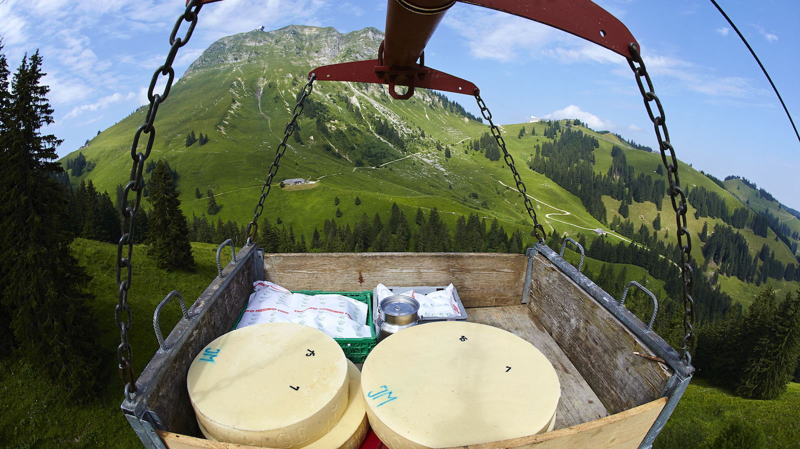 Newly made wheels of cheese are pictured on a monorail for delivery at the ripening cellar in front of the Moleson summit at the Tsermon mountain pasture chalet in Gruyeres, western Switzerland, July 17, 2013.