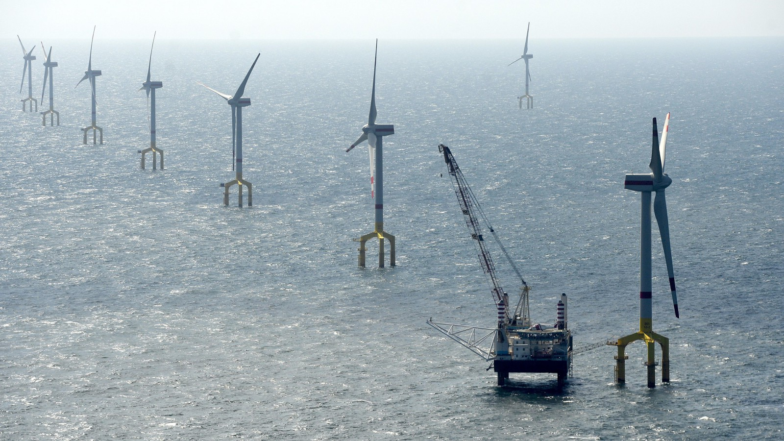 Windmills of the wind farm BARD Offshore 1, are pictured 100 kilometres north-west of the German island of Borkum, August 26, 2013. The first complete high-sea wind farm off the North Sea coast was opened by German Economy Minister Philipp Roesler on Monday.  REUTERS/Fabian Bimmer (GERMANY - Tags: BUSINESS ENERGY TPX IMAGES OF THE DAY) - RTX12X2B