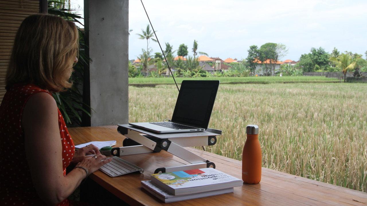 working looking at rice paddies