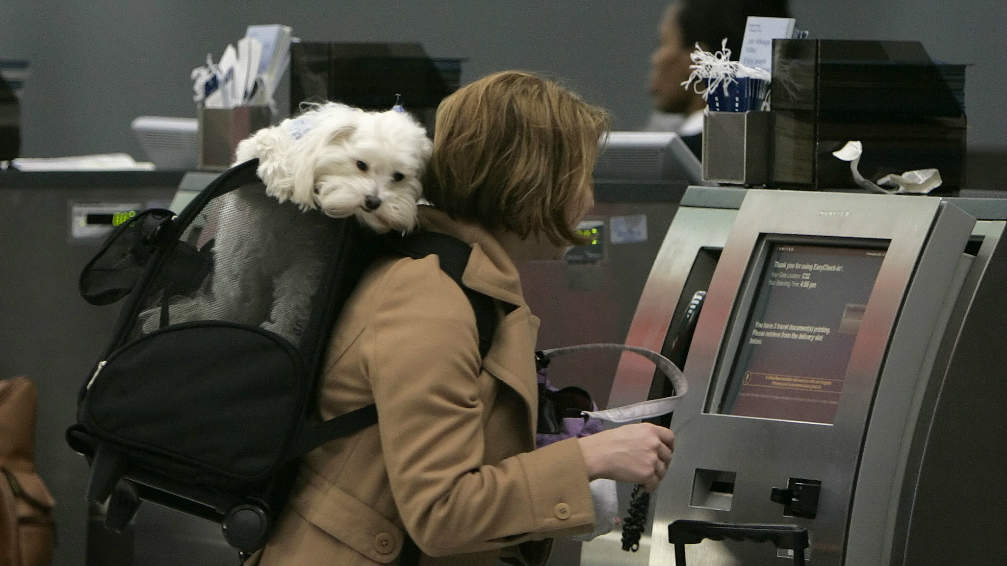 A woman checks in for a flight to Kansas City with her dog in tow.