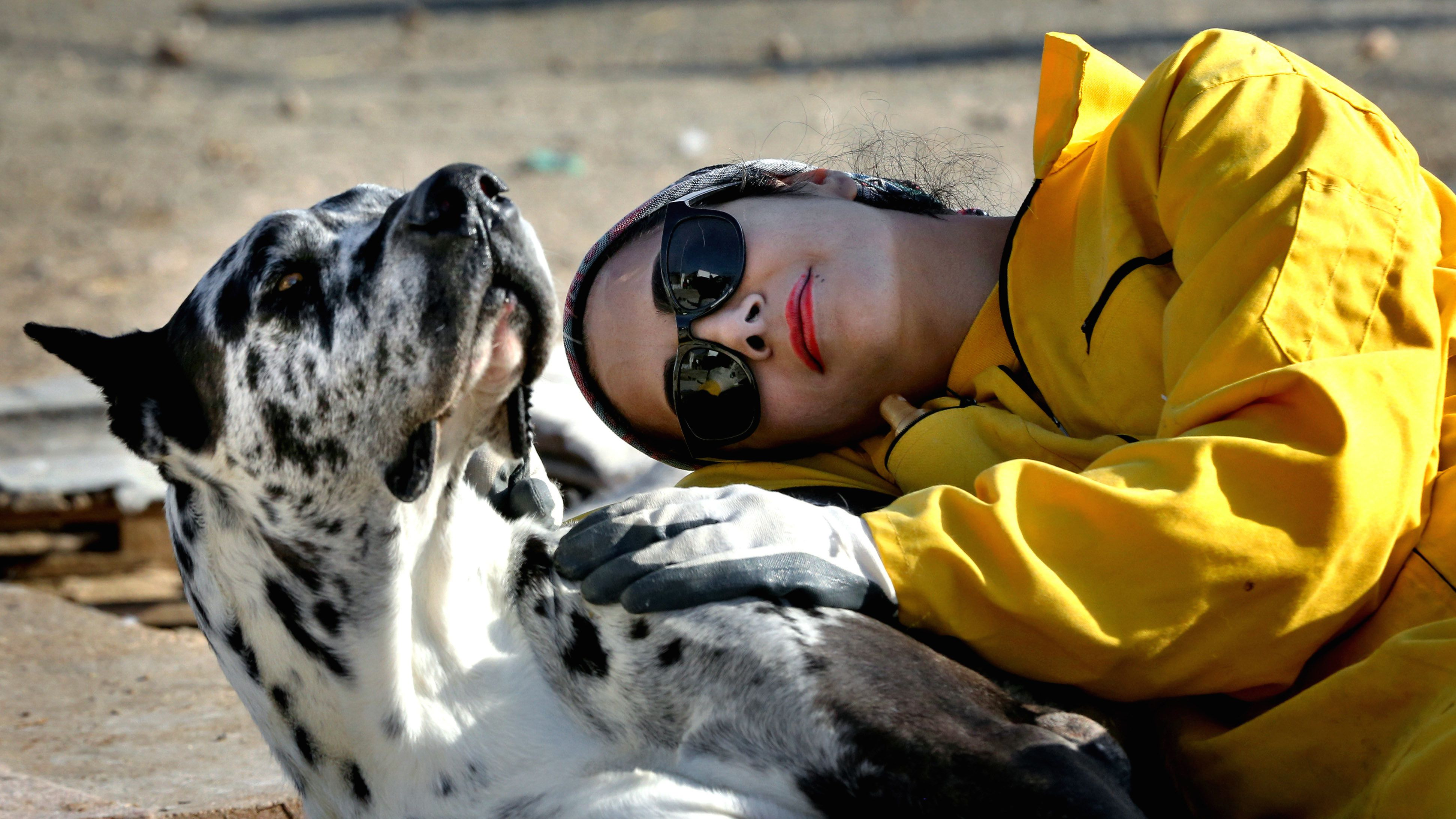 Science proved you and your dog fall in love when you look