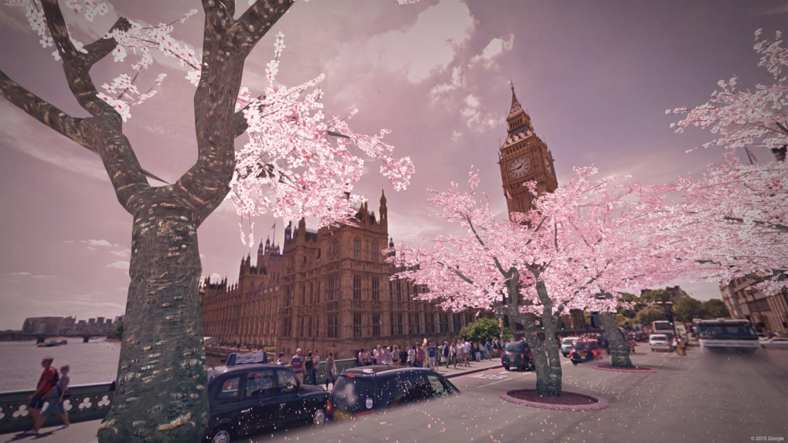 Make Cherry Blossom Trees Magically Appear In Your Neighborhood Quartz