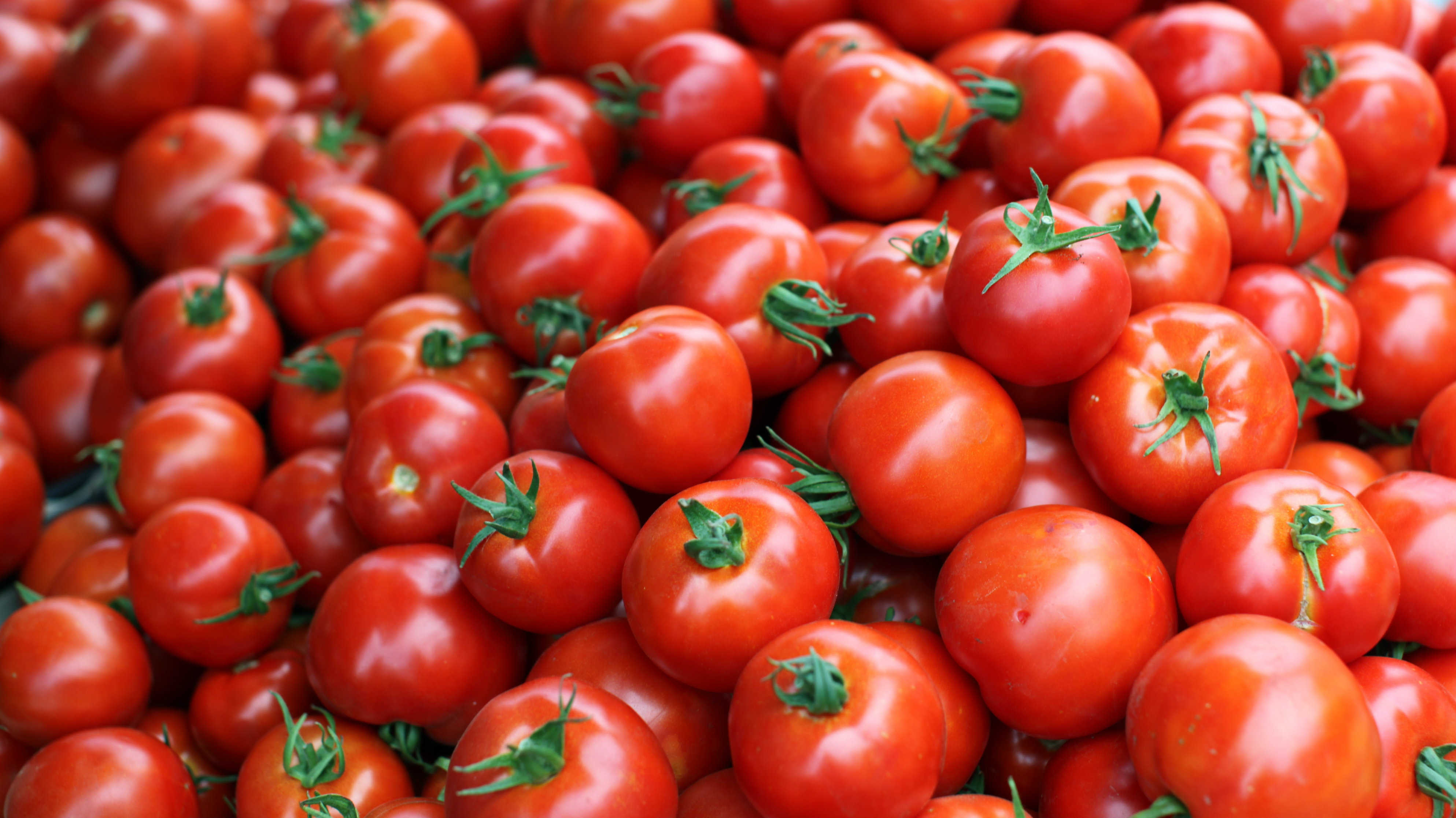 Food Sale: Organic Farming Is Worse For Climate Change Than
