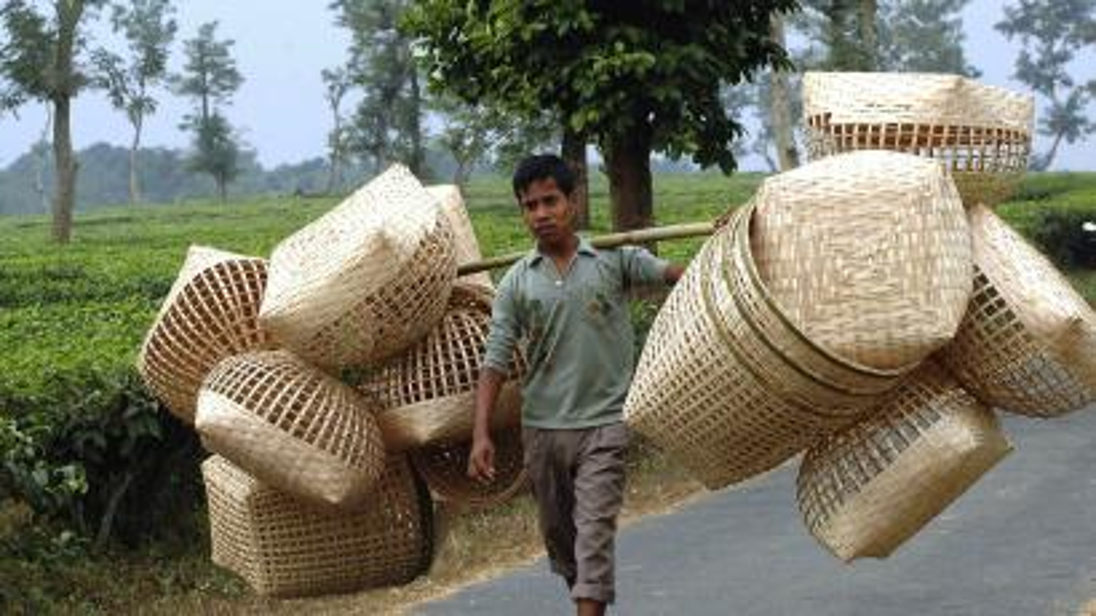 India-northeast-economy-states