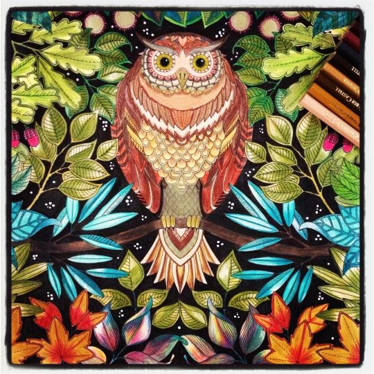 Photos New Coloring Books For Adults Are Good For Your Health Quartz