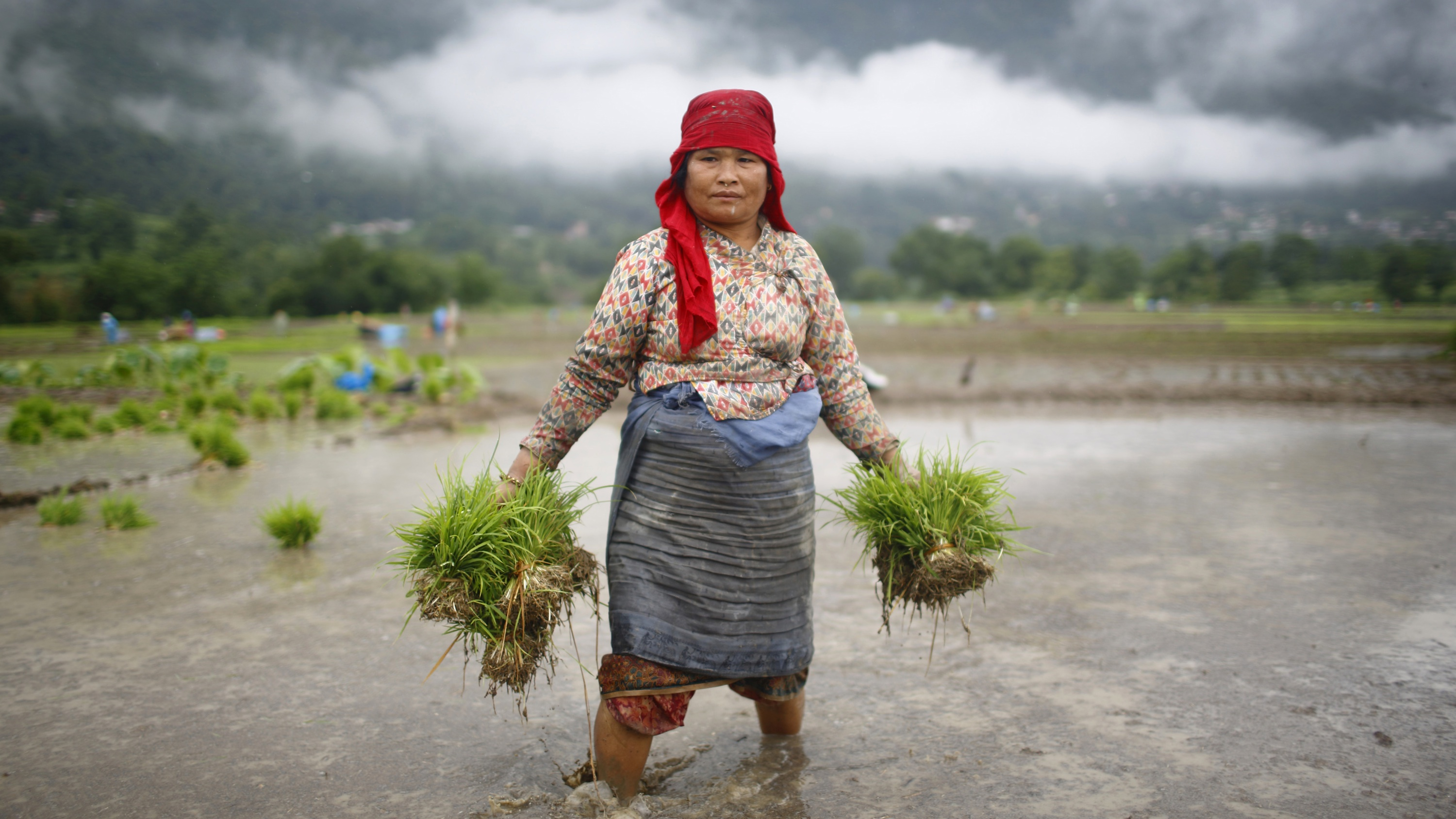 Female subsistence farmers in the developing world will bear the most severe impacts of climate change.