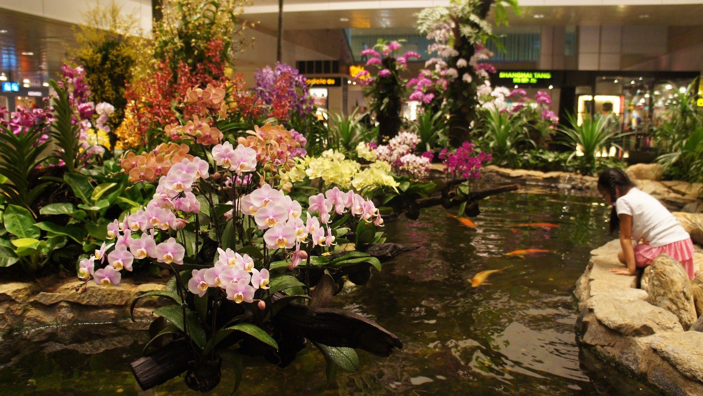 The Worldu0027s Best Airport Has A Horticulture Team, A Butterfly Garden, And  500,000 Plants U2014 Quartz