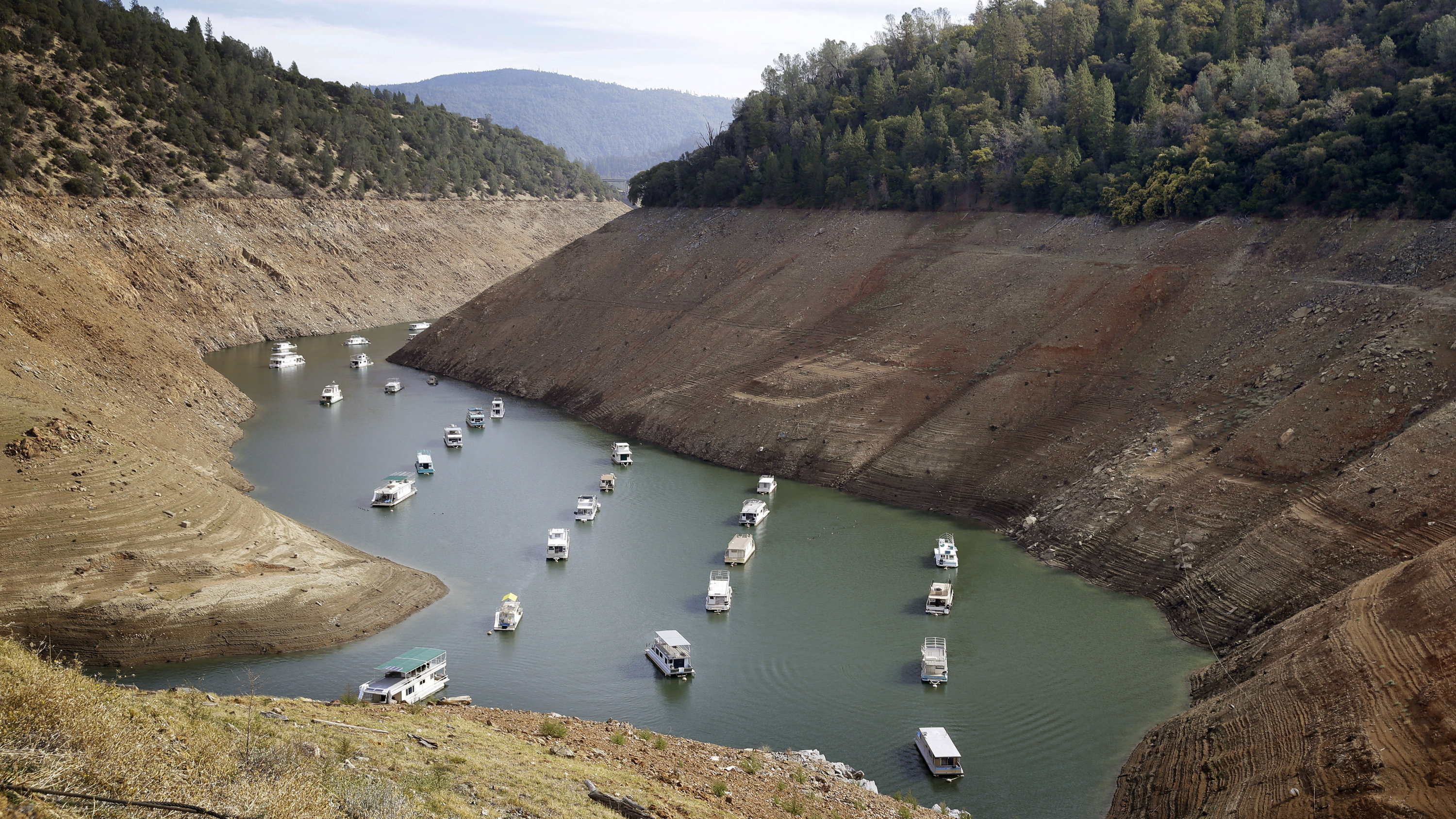 oroville lake with houseboats