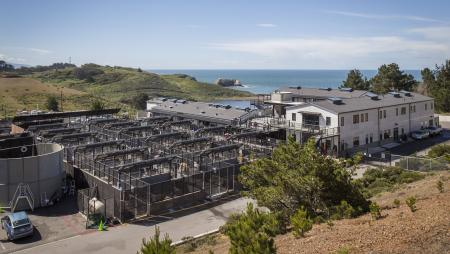 epa04736369 (18/20) A general view of the Marine Mammal Center in Sausolito California, USA, 07 April 2015. Wildlife services in California are being pushed to their limits this year. Since January 2015, every month has set a record in sea lion strandings, mostly sea lion pups, according to the National Oceanic and Atmospheric Administration. EPA/PETER DASILVA PLEASE REFER TO ADVISORY NOTICE (epa04736350) FOR FULL FEATURE TEXT
