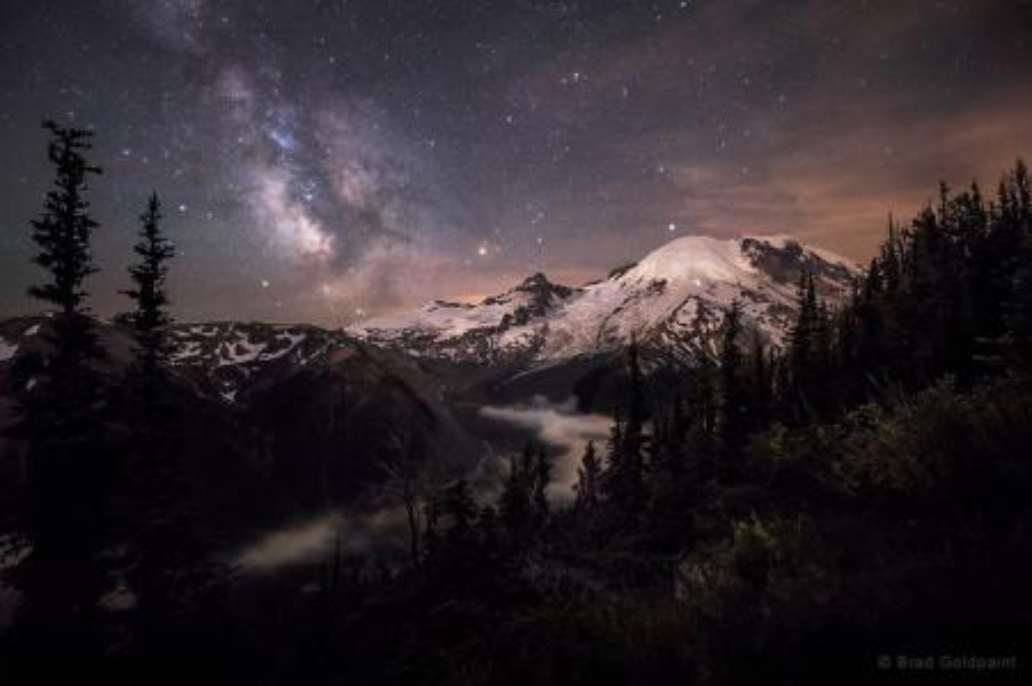 """""""Moonlit Darklings"""" in Washington"""