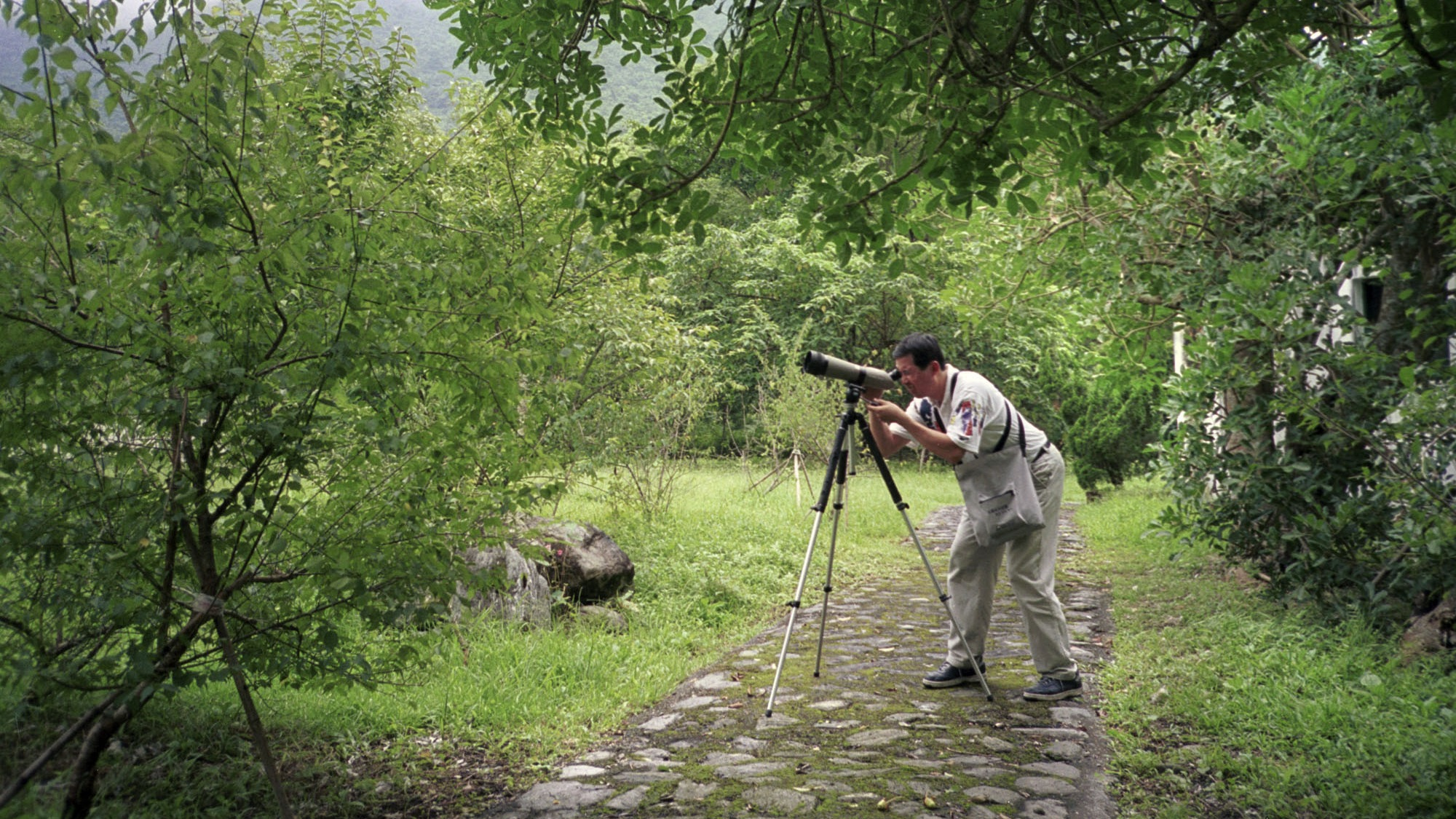 Tour guide Huang Chia-fa looks at bird through his binoculars at a rain forest in Fuyuan in Taiwan's eastern county of Hualien, June 1, 2003. Fuyuan Forest Resort, in the low mountain range of coastal Hualien County is a birdwatcher's paradise thanks to new conservation efforts and a greater awareness of the importance of nature. The forest is home to some 50 bird species, including a few rare birds like the maroon oriole. Mountainous subtropicalTaiwan has about 150 bird species, including 15 indigenous species. (AP Photo/Aniie Huang)
