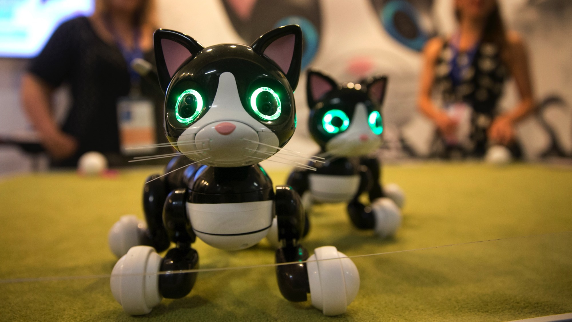 In this Saturday, June 6, 2015 photo, robot pets Zoomer Kitties are demonstrated at CatConLA in Los Angeles. The first-ever CatConLA brought the cat craze popularized online to life. (AP Photo/Jae C. Hong)