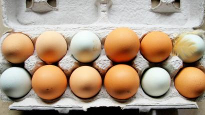 Here's why your brown eggs have more blood spots than white