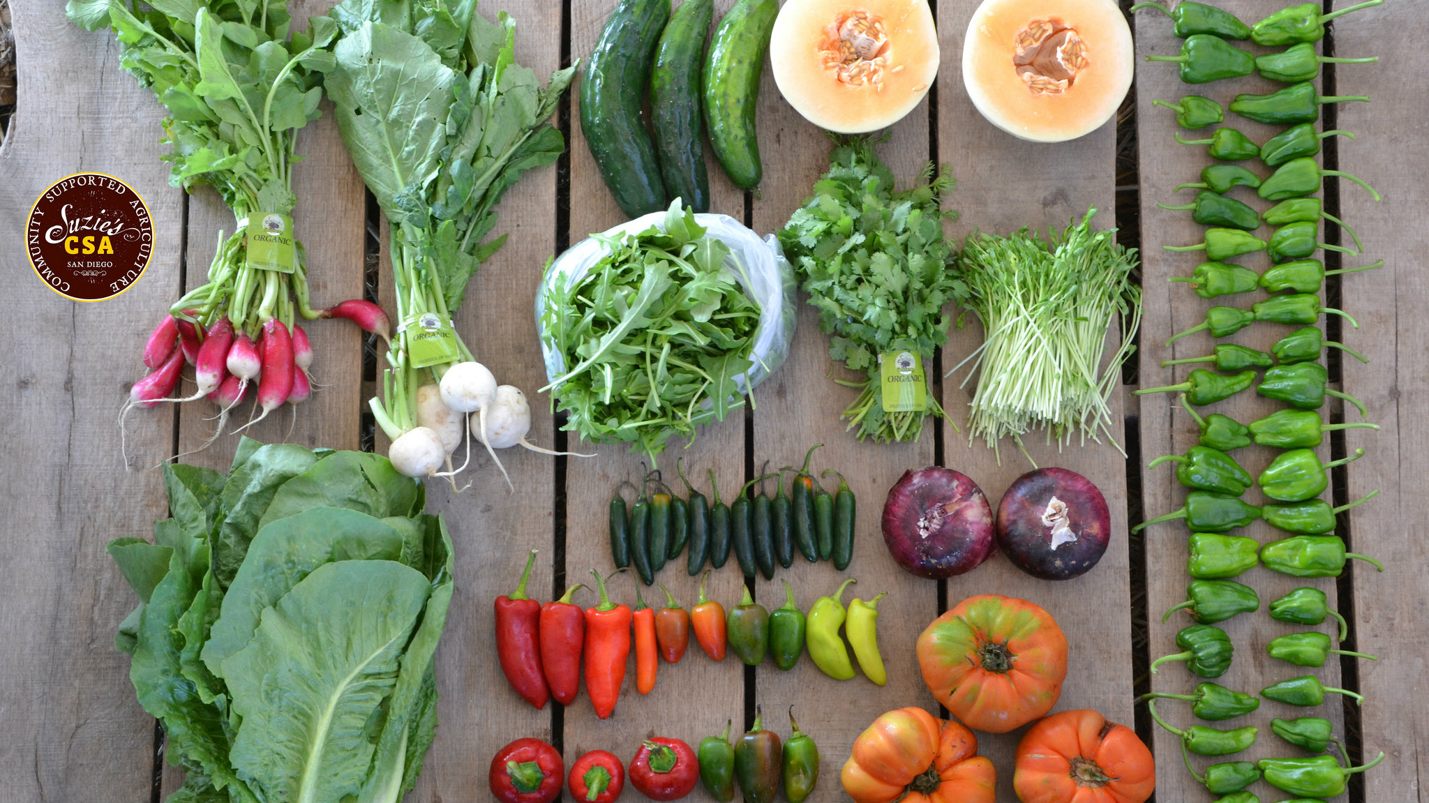 csa-vegetables-summer-cooking 2