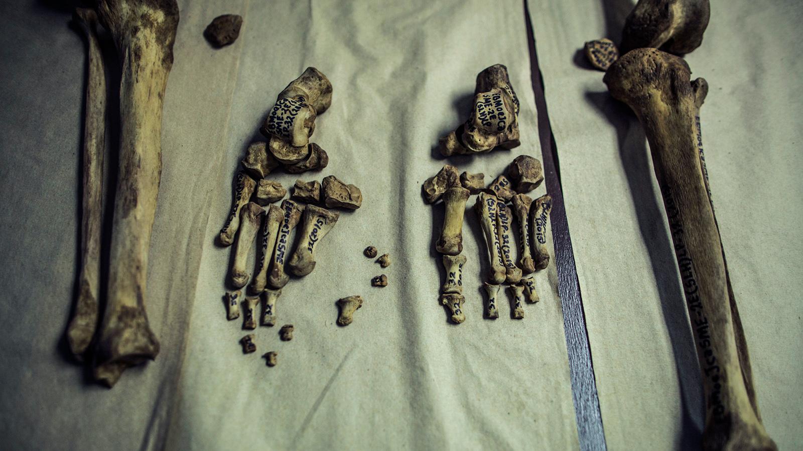 Bones unburied from a clandestine cemetery in the village of Zacatecoluca