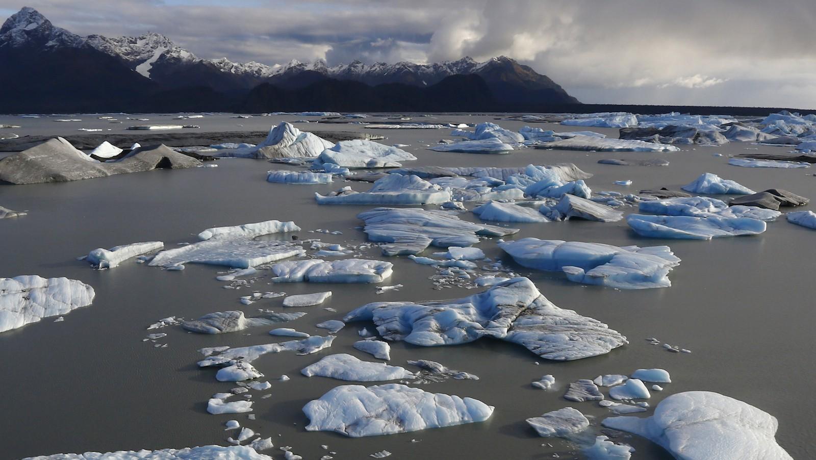 Icebergs are seen floating in Harlequin Lake near Yakutat, in southeastern Alaska