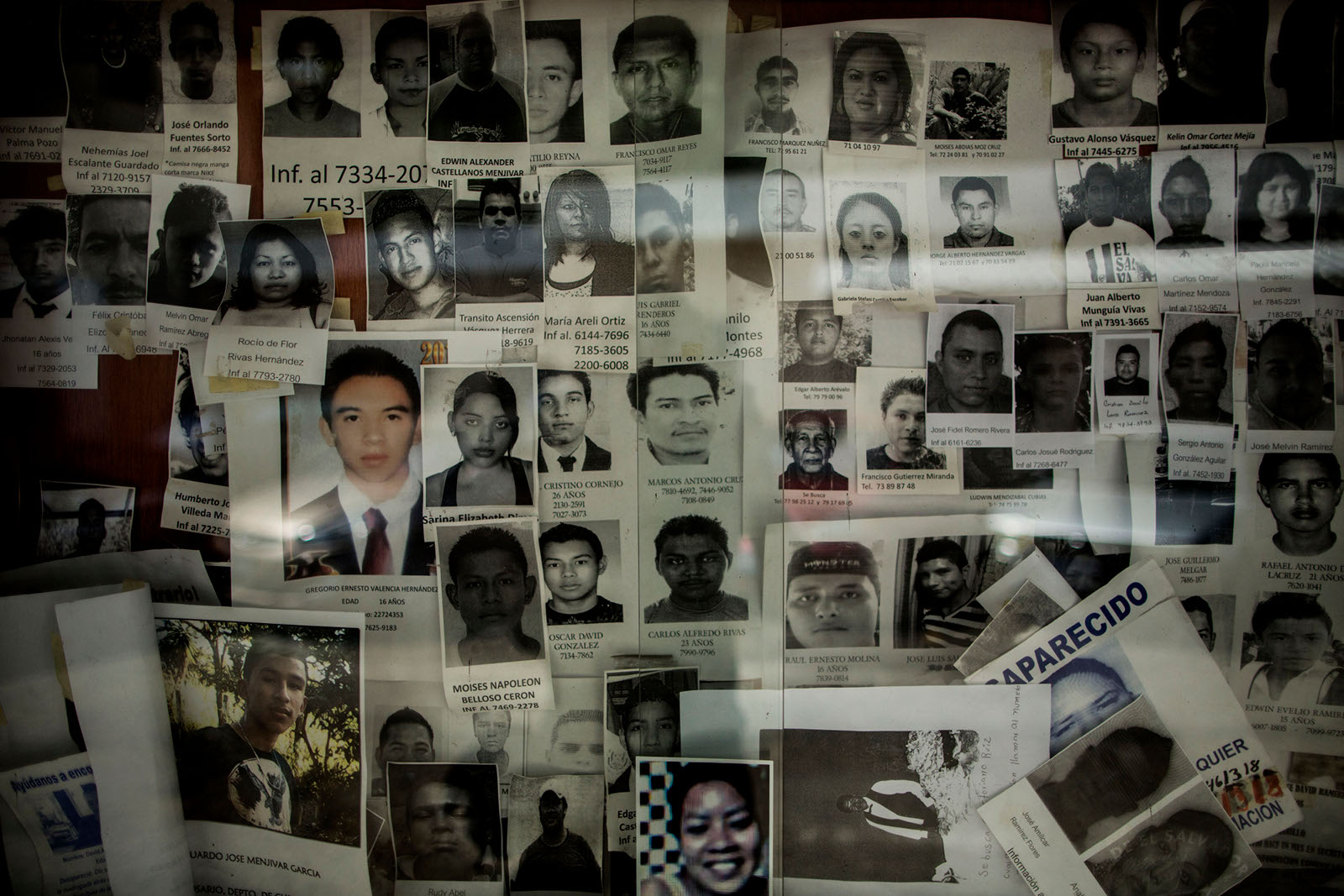 Images of missing people are tacked to a wall at the capital's Institute of Legal Medicine