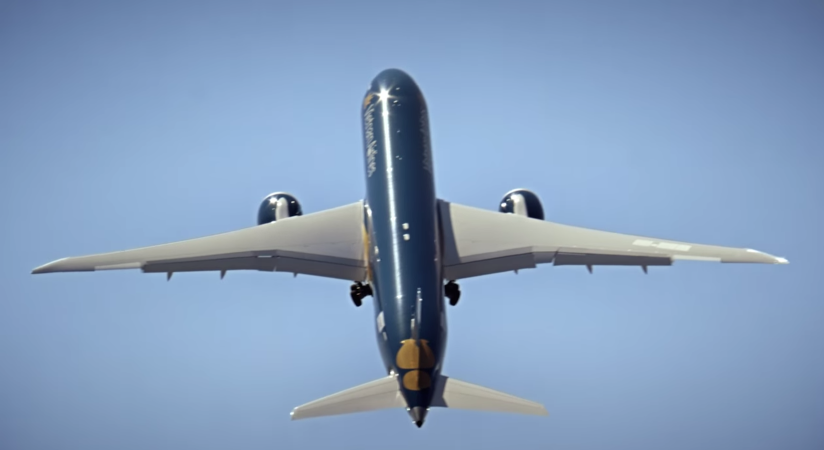 Boeing Dreamliner does an almost vertical ascent