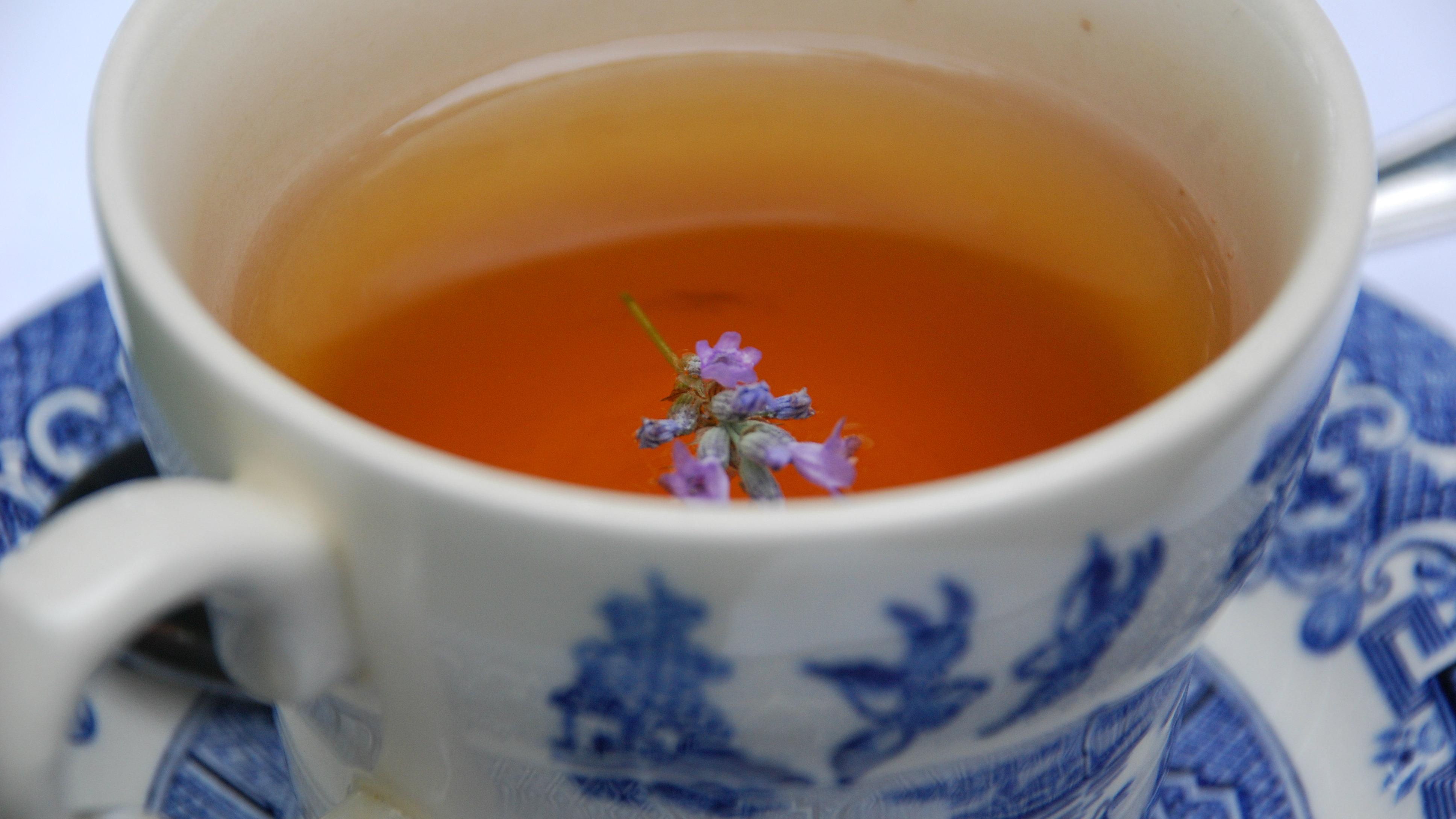 tea-bone-health-bones-density-osteoporosis 2