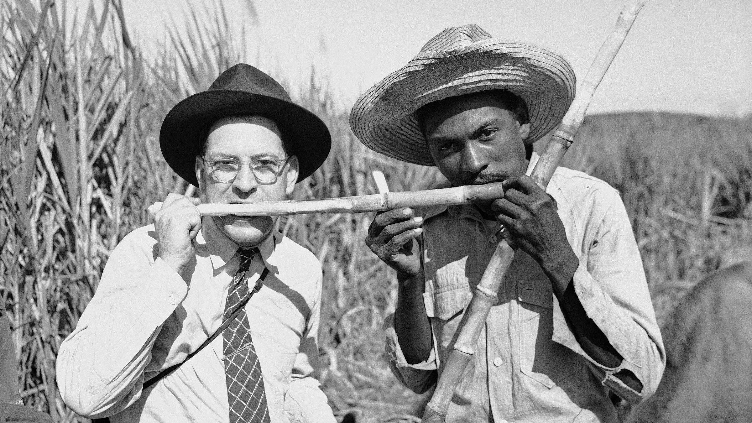 Associated Press Wide World photographer Ken Lucas tries his teeth on a piece of raw sugar cane with a Cuban sugar farmer, Jan. 25, 1946.