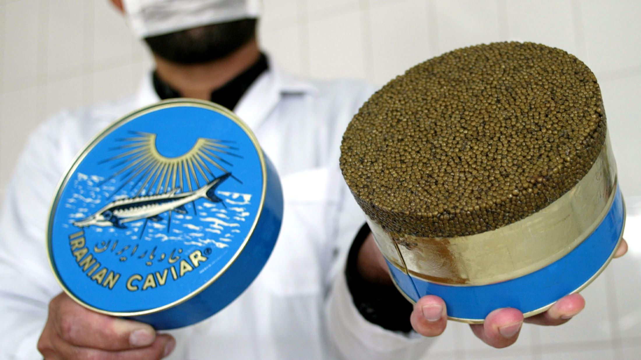 """-PHOTO TAKEN 21OCT03- An Iranian caviar packer shows a 2 kilogram can of Beluga caviar at the Bandar-e Anzali caviar packing facility in northern Iran October 21, 2003. [Fishermen on the windswept beach at Bandar-e Anzali fear illegal fishing and oil pollution mean they could be the last generation to scour the Caspian for its """"black gold"""".]"""