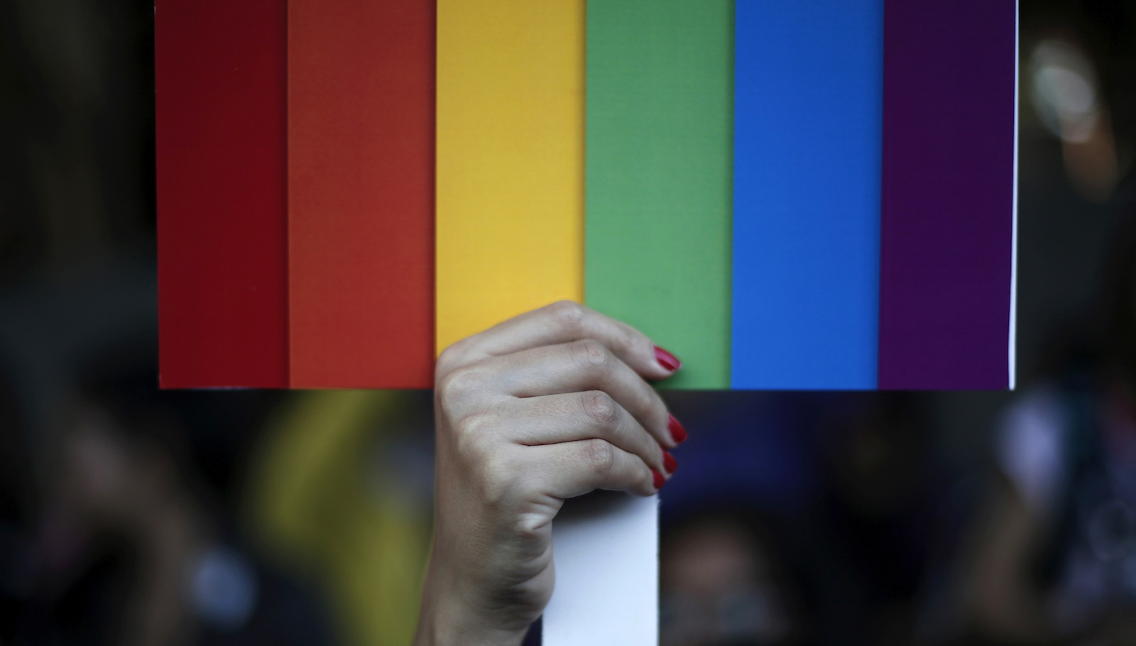 A participant holds a rainbow coloured placard during Delhi Queer Pride Parade, an event promoting gay, lesbian, bisexual and transgender rights, in New Delhi November 30, 2014. Hundreds of participants on Sunday took part in a parade demanding freedom and safety of their community, according to a media release.