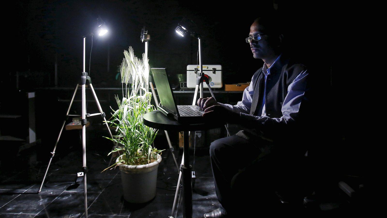 IARI senior scientist Sahoo analyzes satellite images inside a laboratory in New Delhi