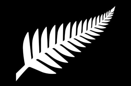 """Silver Fern (Black and White),"" by Kyle Lockwood."