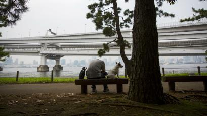 A man rests on a bench next to his dog with the Rainbow Bridge in Tokyo.