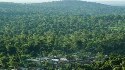 Environmentalists have been fighting to preserve Uganda's Mabira Forest Reserve.
