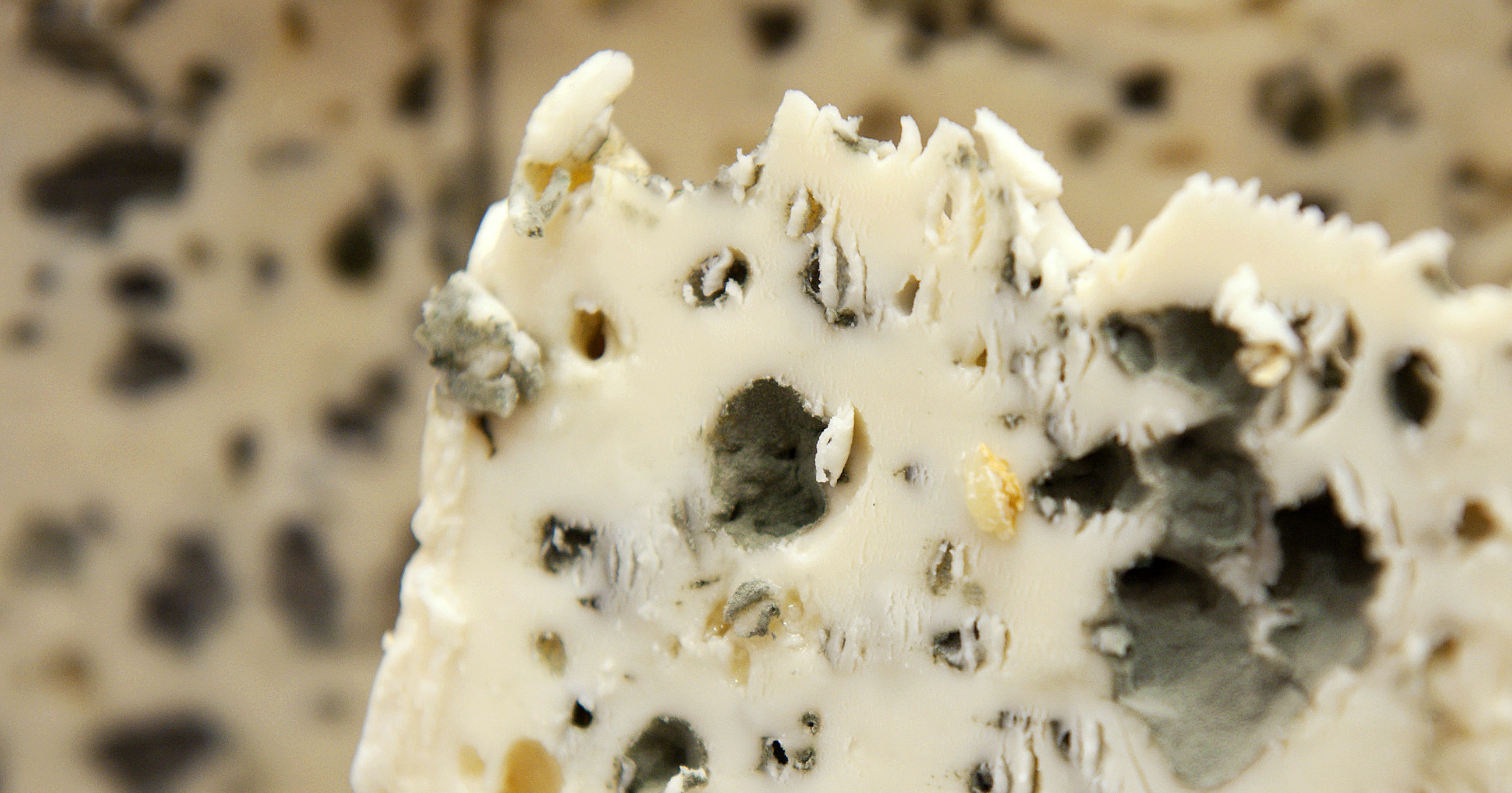 notallmolds why is it safe to eat bleu cheese quartz