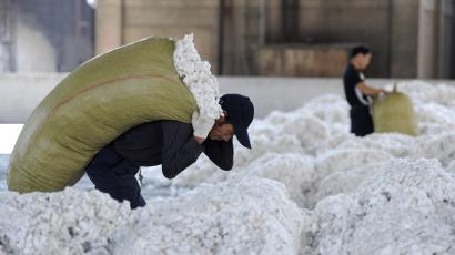 A worker carries a sack of cotton at a cotton purchasing station in Wuhu, Anhui province, October 2, 2012.