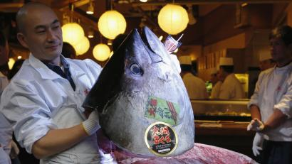 DATE IMPORTED:January 05, 2013Kiyomura Co's employee holds the head of a 222 kg (489 lbs) bluefin tuna after cutting its meat at the company's sushi restaurant outside Tsukiji fish market in Tokyo January 5, 2013. Kiyomura Co's President Kiyoshi Kimura, who runs a chain of sushi restaurants, won the bid for the tuna caught off Oma, Aomori prefecture, northern Japan, with a record 155.40 million yen (1,762,700 USD) at the fish market's first tuna auction this year. REUTERS/Toru Hanai