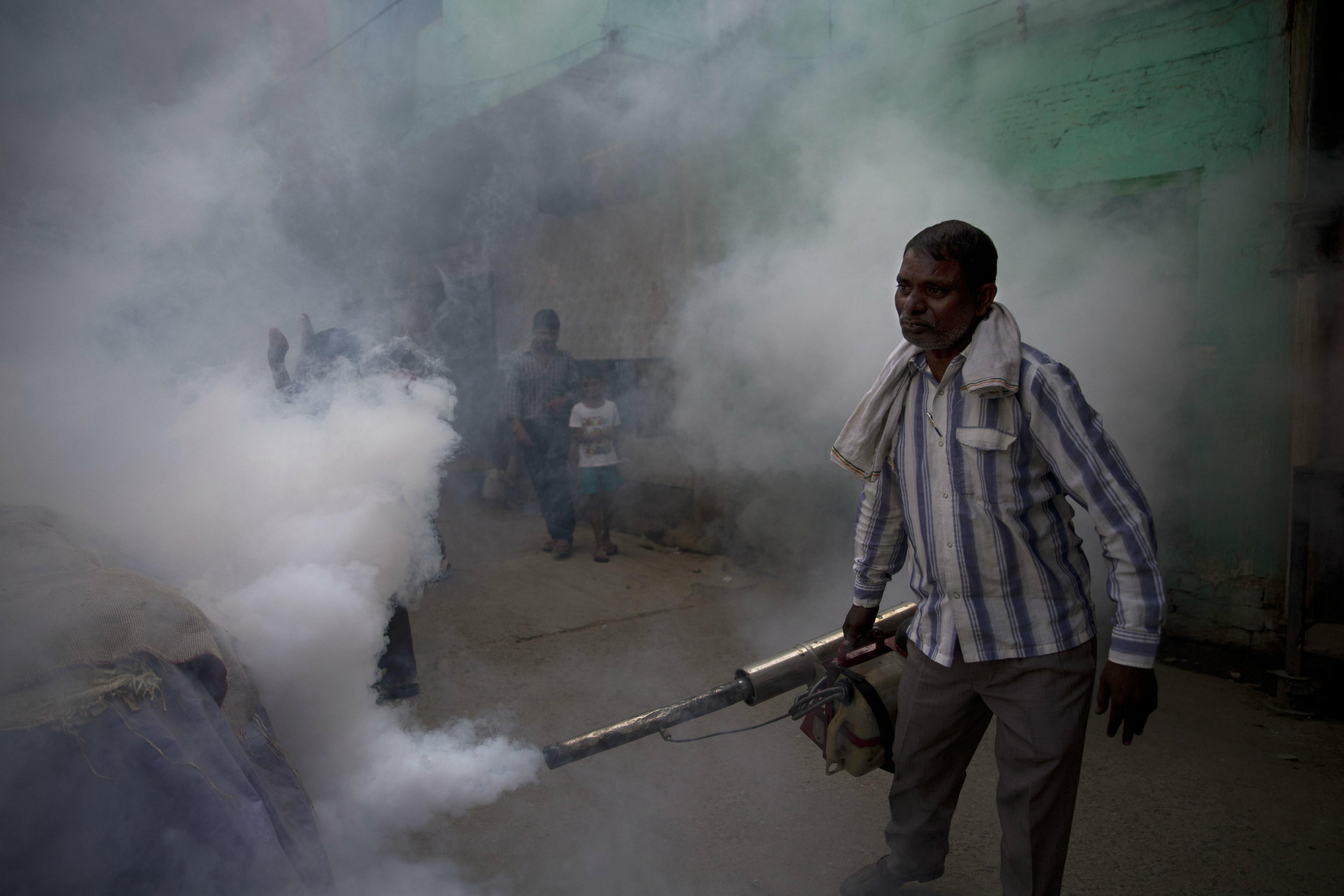 Dengue-New Delhi
