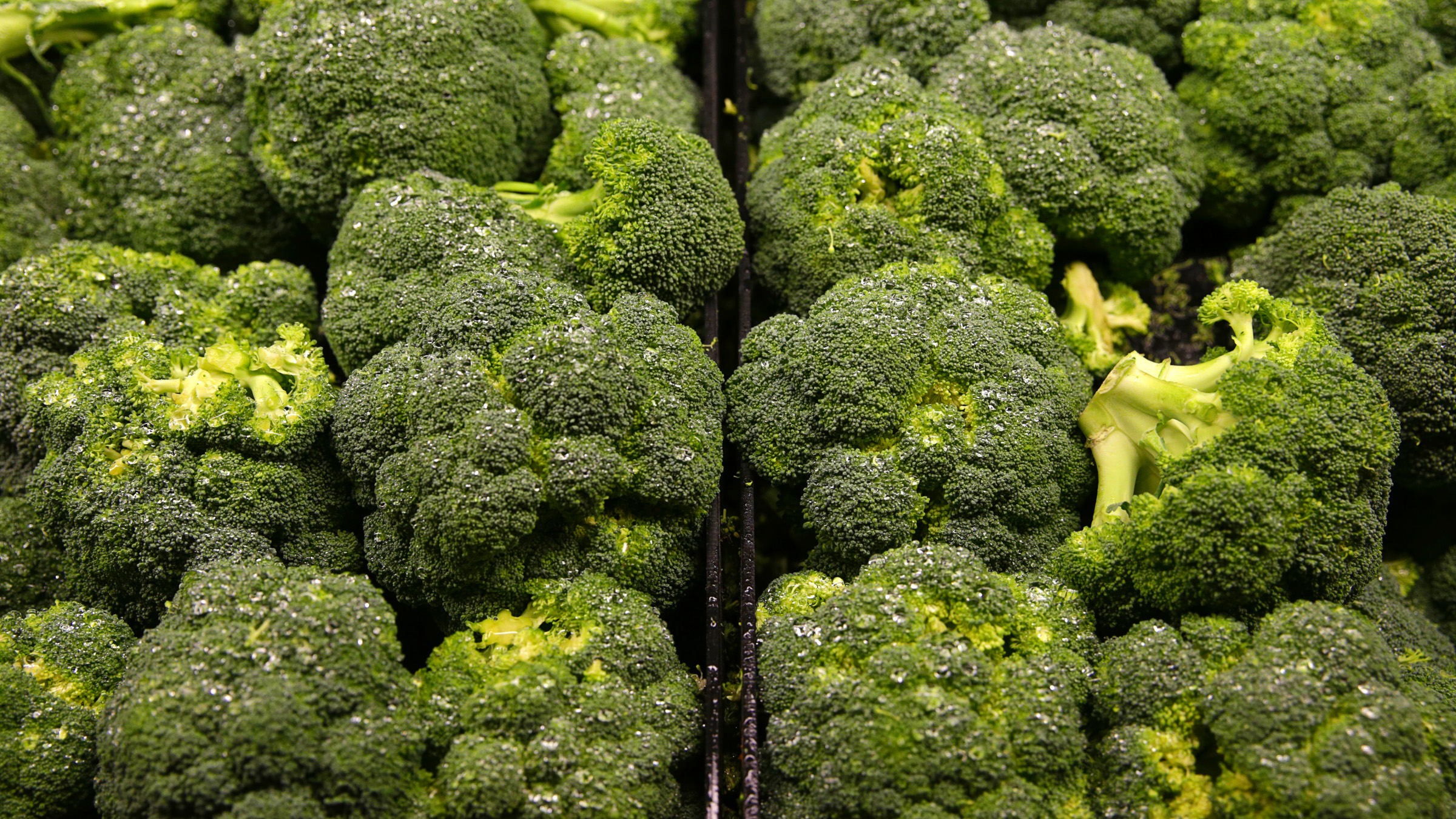 Broccoli is seen on display at the Safeway store in Wheaton, Maryland February 13, 2015.