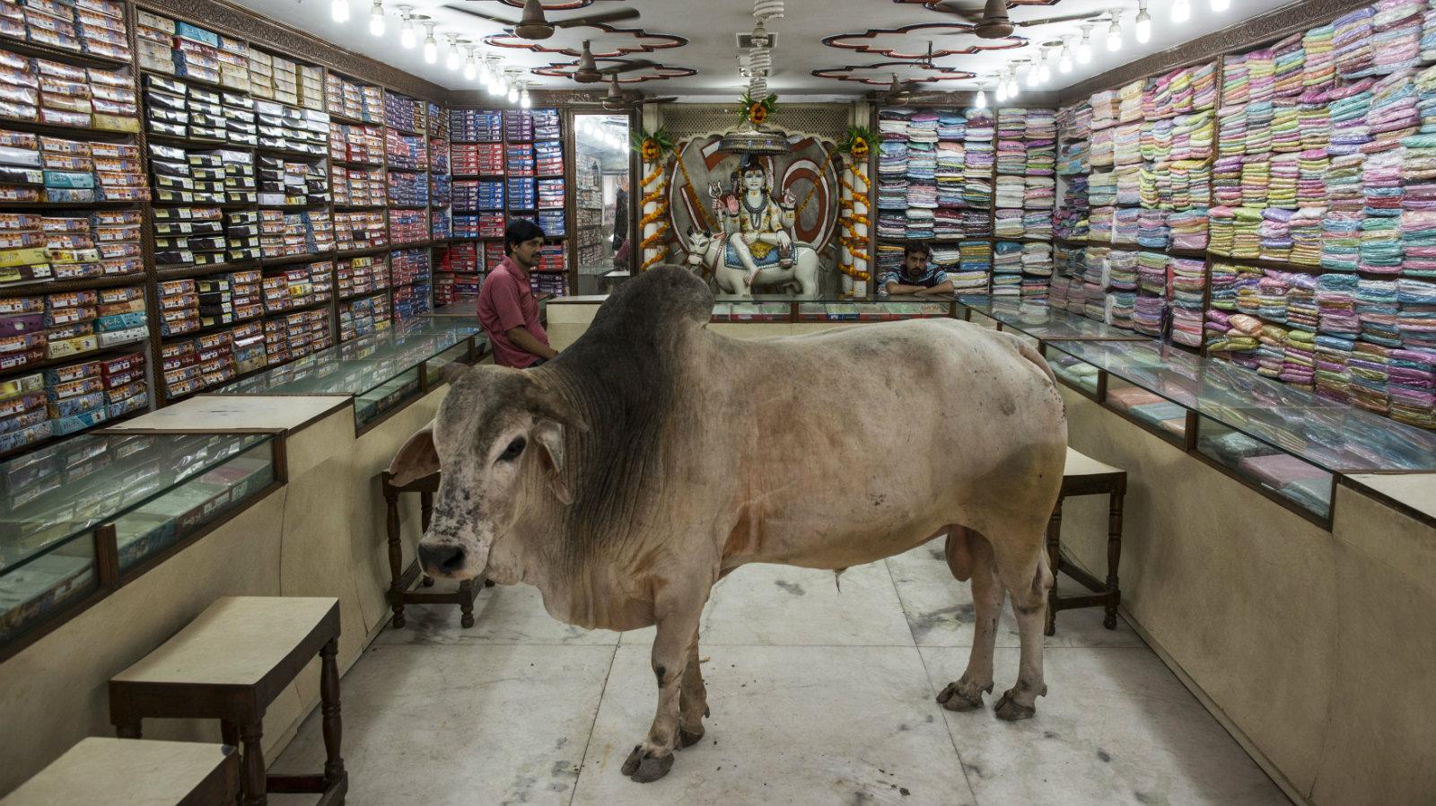 India-retail-offline-online
