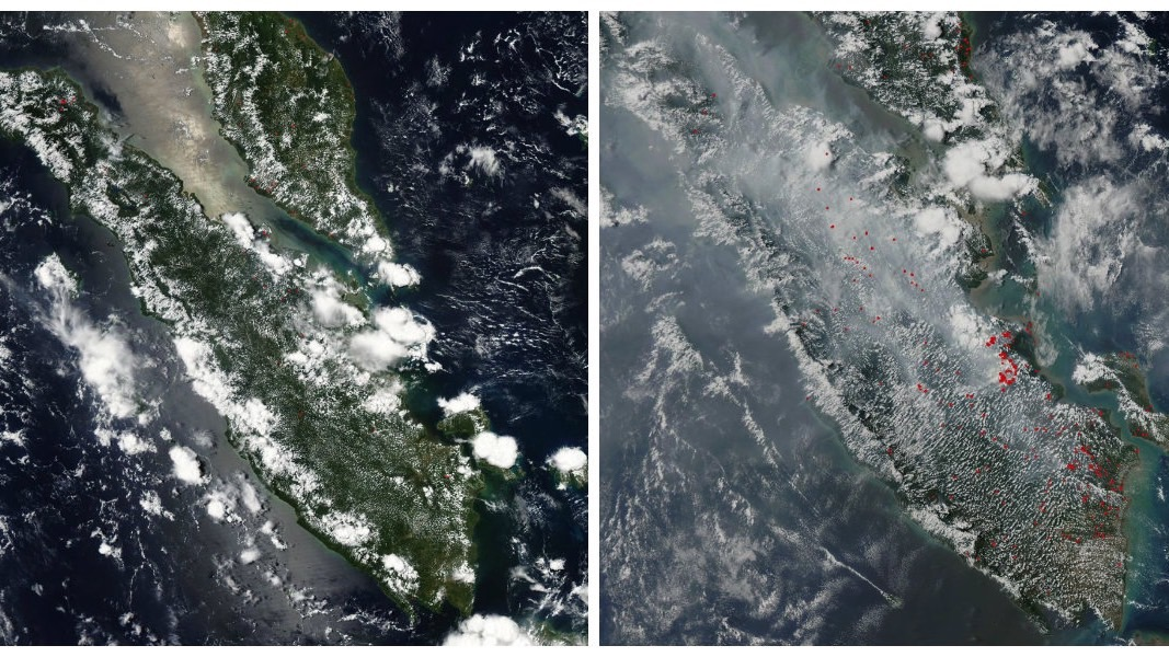 feature image sumatra april 4 versus sept 4 2015 forest fires palm oil indonesia