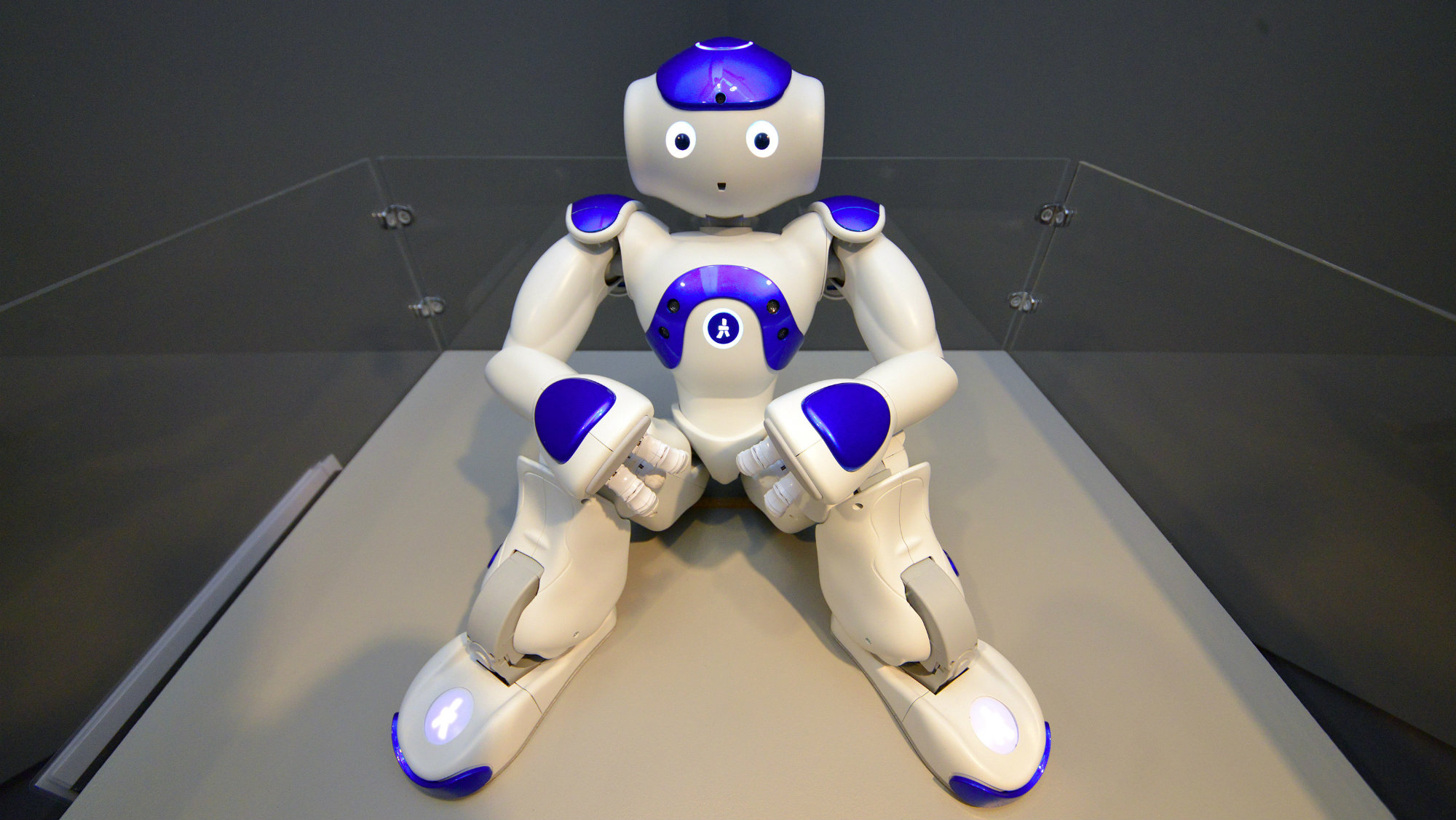 'Robot Nao V5 Evolution', a cognitive robot, is on display during the presentation of the new exhibition 'Portrait Robot' at the Maison d'Ailleurs in Yverdon, Switzerland