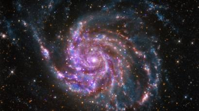The spiral galaxy M101 is pictured in this handout photo from NASA's Chandra X-Ray Observatory.